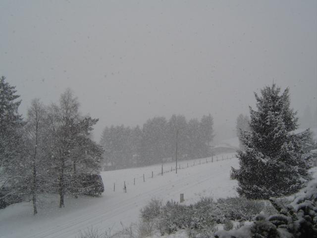 weder sonne noch schnee
